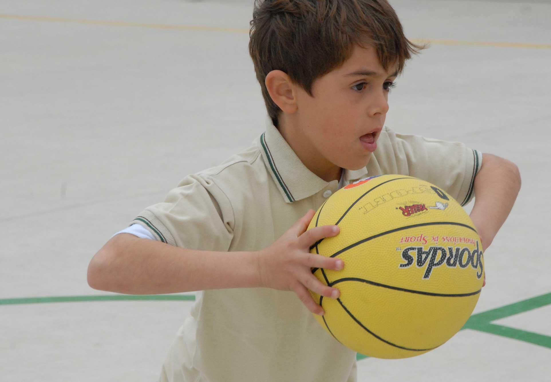 Bremer Basketball-Verband
